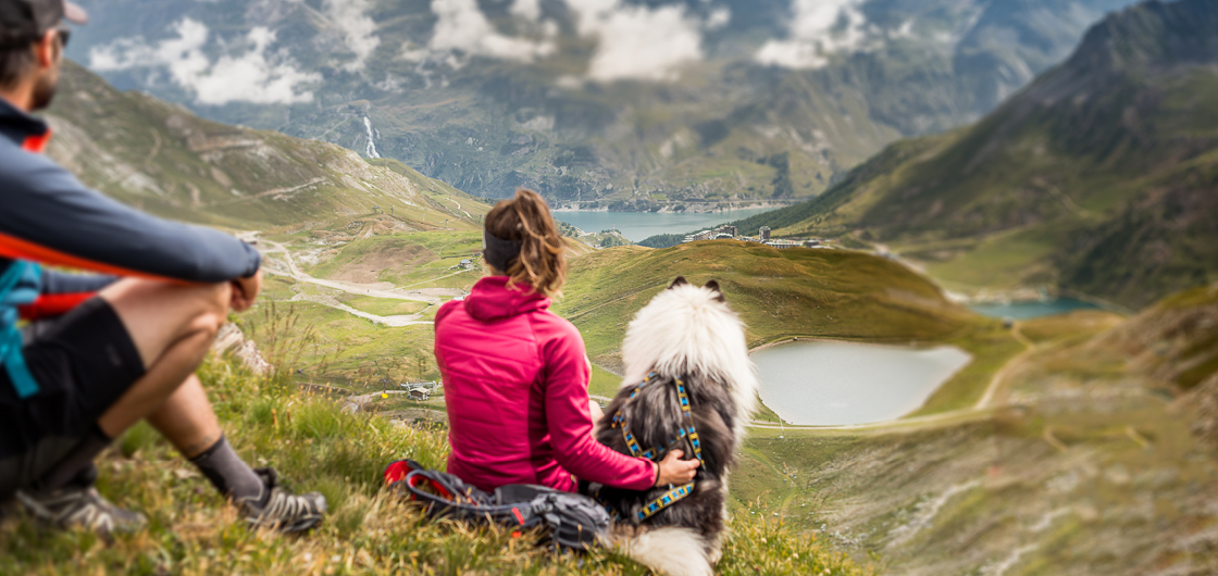 How to enjoy Tignes in summer with your dog